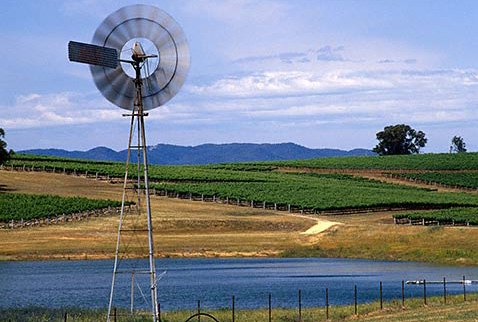 Регион виноделия Новый Южный Уэльс - Water pump and dam amidst the vineyards of Montrose Wines, Mudgee, New South Wales, Australia. [Mudgee]