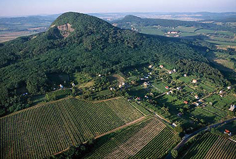 Регионы виноделия Венгрии - Vineyards around extinct volcano stump, Badacsony, Hungary. [Badacsony / Lake Balaton]
