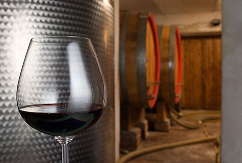 Производители вина - Glass of Barolo Serralunga wine in the cellars of Giovanni Rosso. Serralunga d'Alba, Piemonte, Italy. [Barolo]