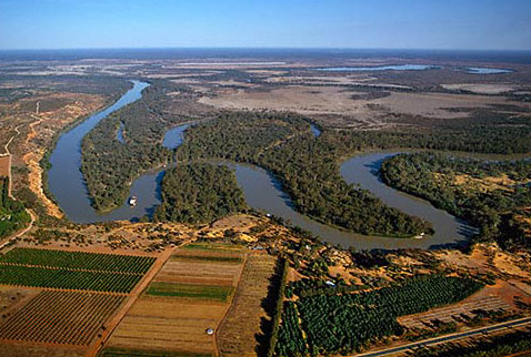 Регионы виноделия Австралии - The meanderings of the Murray River with the Murray Princess paddle-steamer. Citrus groves and vineyards in foreground. Renmark, South Australia. [Riverland]